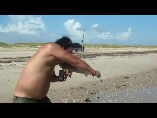 Акула опасна даже на берегу!