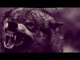 «Со стены Другой мир» под музыку Би 2 - Волки уходят в небеса. Picrolla