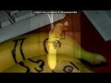 Основной альбом под музыку Sam And The Womp! - Bom Bom. Picrolla