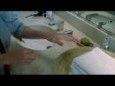 "фильм ""Белый Олеандр  White Oleander"" (2002)"