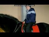 «мы и кони!!» под музыку Детский хор - Ускакала в поле молодая лошадь... - Песня про девушку, которая улетела... и не хочет возвращаться... :) . Picrolla