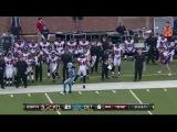 NFL 2012-2013 | Week 16 | Atlanta Falcons @ Detroit Lions*