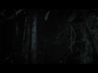 Без вести пропавшие / Desaparecidos (2011)