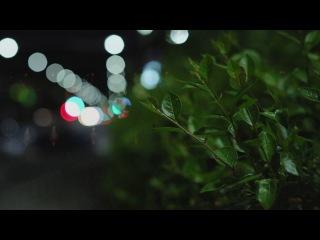 Релиз фильма