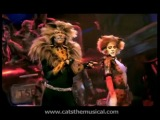 The Rum Tum Tugger - starring John Partridge. HD, from Cats the Musical -