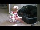 Ребенок играет с Доберманом