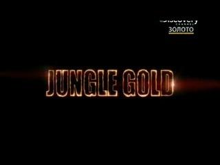 Vk.com/junglegold_official - Золото джунглей l Jungle Gold l 1 сезон l 2 серия