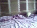 Борьба кота Васьки с крысой Мишкой