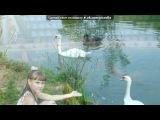 «Я и море)» под музыку Света - Синеглазые дельфины. Picrolla