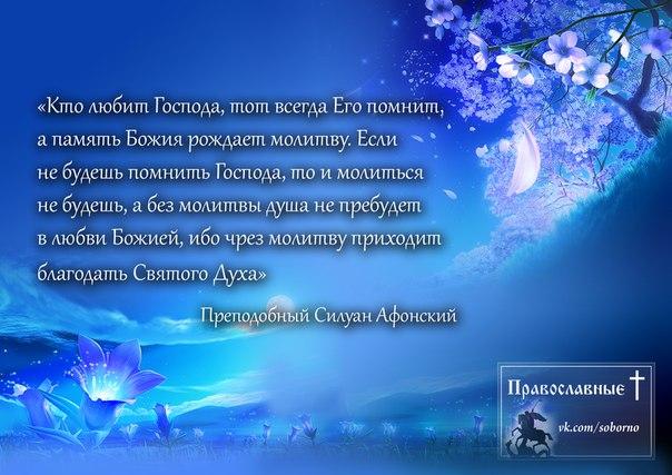 http://cs5138.userapi.com/v5138028/1a01/xLQYjydgLno.jpg