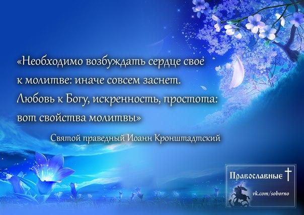 http://cs5138.userapi.com/v5138028/1a15/wFBU65YL3A0.jpg