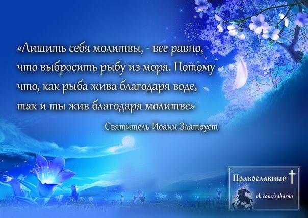 http://cs5138.userapi.com/v5138028/1a3d/kjnBZ5J-q3k.jpg