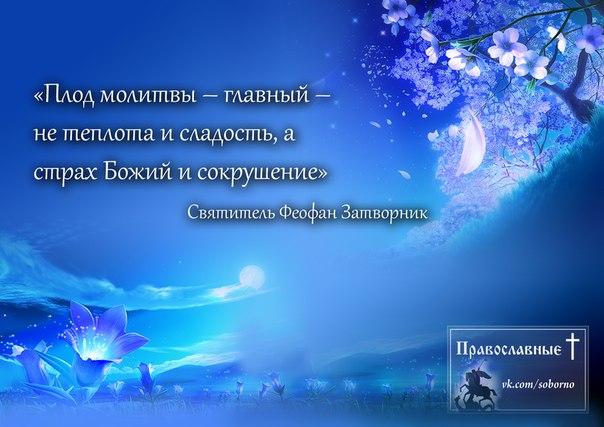 http://cs5138.userapi.com/v5138028/1a47/QmLBEsWxGl8.jpg