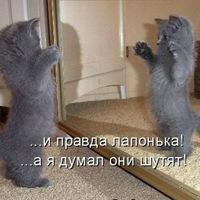 Дима Стрижак, 2 июня 1984, Славянск, id137569484