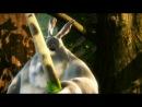 """Мультик """"Большой толстый Кролик"""" (Big Buck Bunny)"""