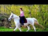 конно-спортивная школа под музыку Taio Cruz Feat. Pitbull - There She Goes (Final &amp NoShout). Picrolla