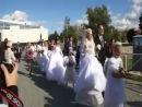 Церемония чествования молодоженов г. Электросталь 08.09.2012