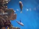 Аквариум (Океанариум) в Барселоне. L'Aquàrium de Barcelona