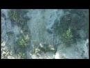 Гигантский карп