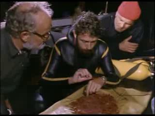 Подводная одиссея команды Кусто (7 серия) - Киты пустыни (1969 г.)