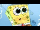 «Губка Боб» под музыку ♥ блек ай пис - песня из фильма Такси 4. Picrolla