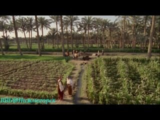 BBC «Древний Египет (6) - Тайны иероглифов» (Художественно-документальный, 2005)