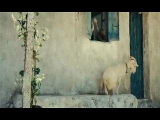 Nicostratos le Pelican/ Пеликан (2011) русский трейлер