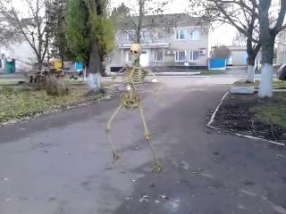 приколи танцующий скелет