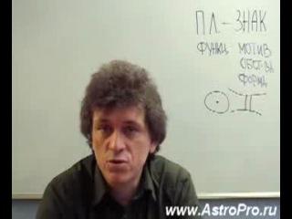 Астролог П. А. Криворучко - Солнце в Близнецах