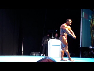 Roelly Nordic Pro Champion 2012 1/2