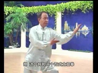 Li Dein 48 форм тайцзицюань (1 диск)
