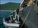 Байкал - В зазеркалье Байкала из цикла Подводная одиссея команды Кусто