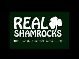 Real Shamrocks - Приглашение на фестиваль