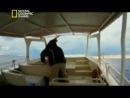 National Geographic: Неисследованные Глубины - Огонь сотворения (1 серия из 5)