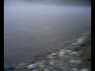 4-дня в дали от Родины(Ежик в тумане)