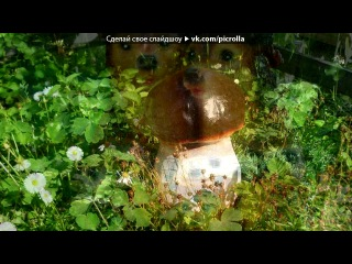 «лето 2012» под музыку Братья Радченко - Домик окнами в сад. Picrolla