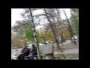 Голубятня геть! - украинское сафари