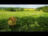 Minuscule - Mouche a miel (s02e11) (2011-2012)