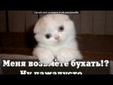 Мо фотки под музыку DJ Fr1N - _CLUBnyak_bomba_улётный Jumpstyle(electro)_хит клубняк 2011_2012