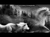 «Со стены Волки» под музыку Собачья жизнь с глазами волка - Если это есть волчья доля - Умирать в снегу от боли, Я её приму на воле!!. Picrolla