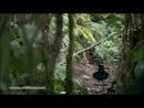 Planet Earth Garry Schyman Praan HD