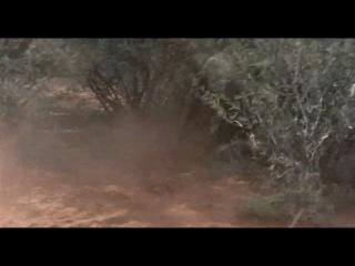 Боги, наверное, сошли с ума 2 / The Gods Must Be Crazy II (1985)