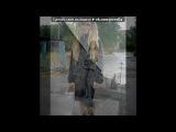 С моей стены под музыку ВИАГРА- - МОЯ ПОПЫТКА НОМЕР 5))ХАХА). Picrolla