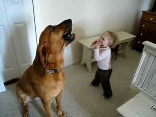 Маленький мальчик играет - большой пёс поёт