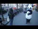 Панда кастует падение
