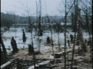 Архив смерти 4 я серия