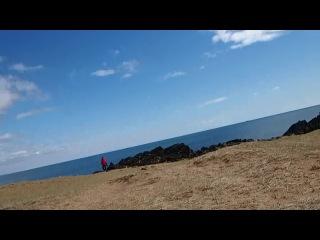 Исландия Желтый пляж на лавовом поле