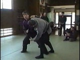 Современное Ниндзюцу в Японии. Часть 2