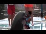 Дельфин занимается сексом с девушкой
