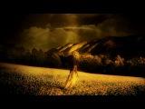 CIRQUE DU SOLEIL - ALEGRIA Full HD_(1080p)